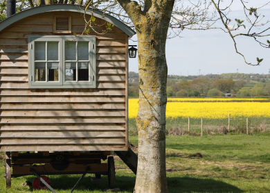 A Shepherd's Hut